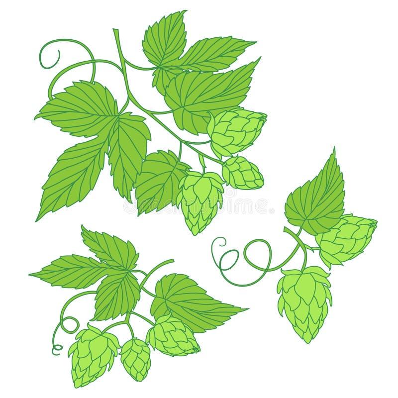 Icona o logo dell'illustrazione di vettore di luppolo, ideale per birra, birra di malto, a royalty illustrazione gratis