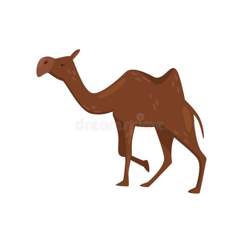 Icona piana del cammello marrone, vista laterale di vettore Animale del mammifero del deserto con una gobba sulla parte posterior illustrazione di stock