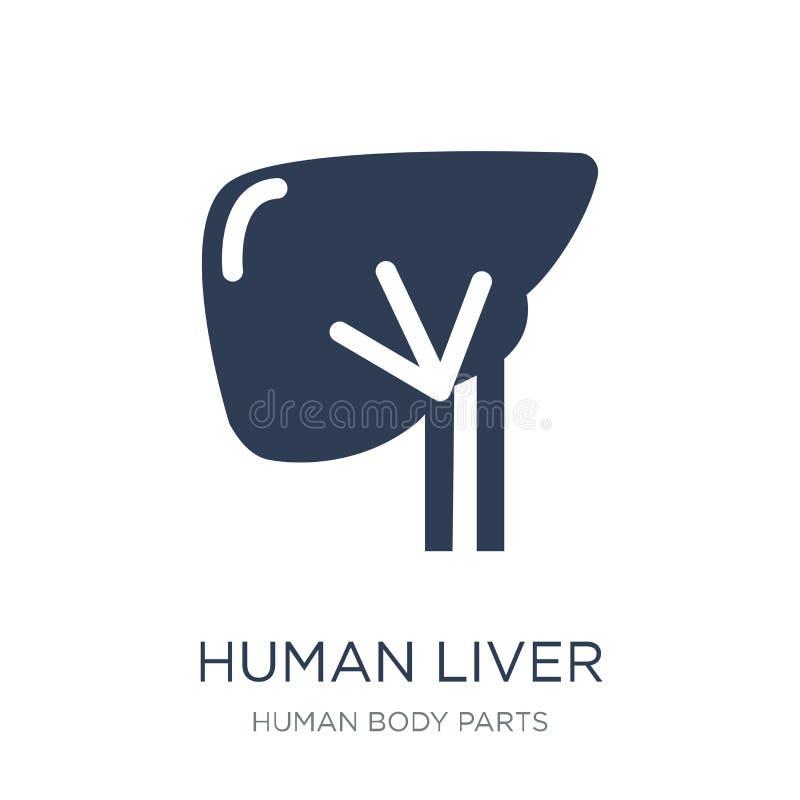Icona umana del fegato Icona umana del fegato di vettore piano d'avanguardia sulla b bianca illustrazione vettoriale