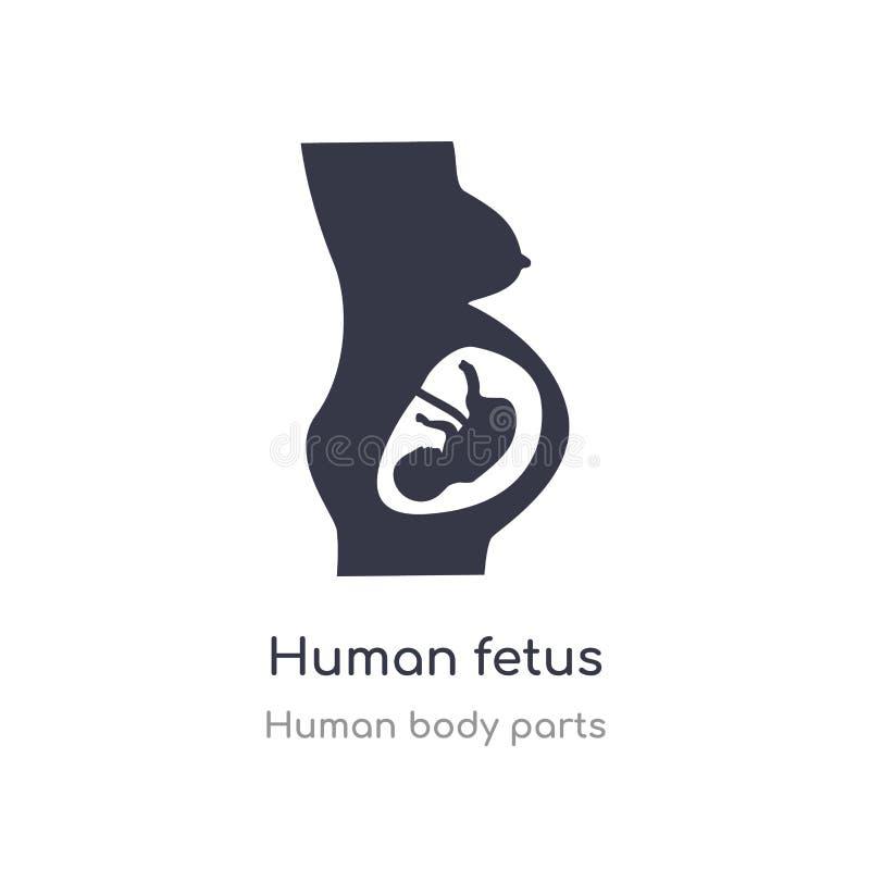 icona umana del profilo del feto linea isolata illustrazione di vettore dalla raccolta umana delle parti del corpo feto umano del illustrazione vettoriale