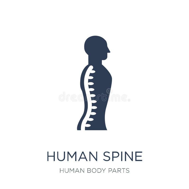 Icona umana della spina dorsale Icona umana della spina dorsale di vettore piano d'avanguardia sulla b bianca royalty illustrazione gratis