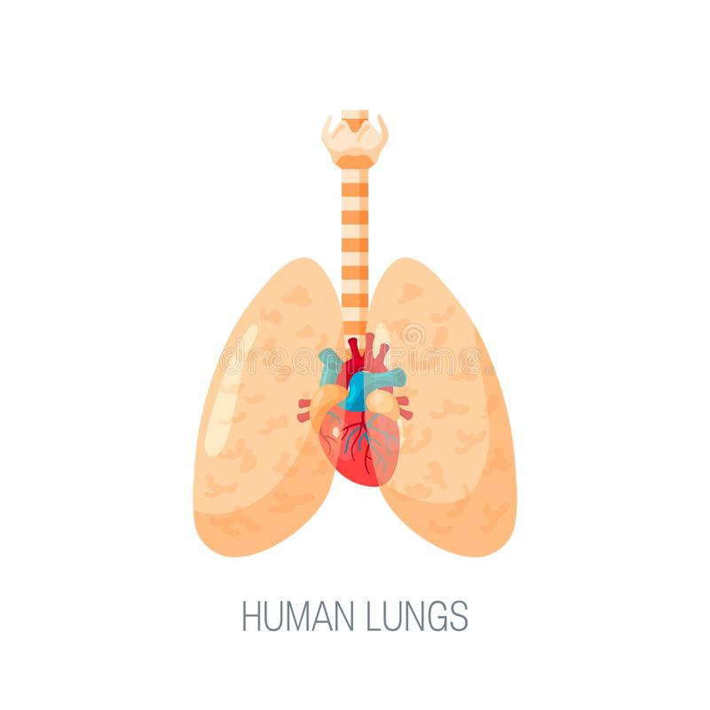 Icona umana di vettore dei polmoni nello stile piano illustrazione vettoriale