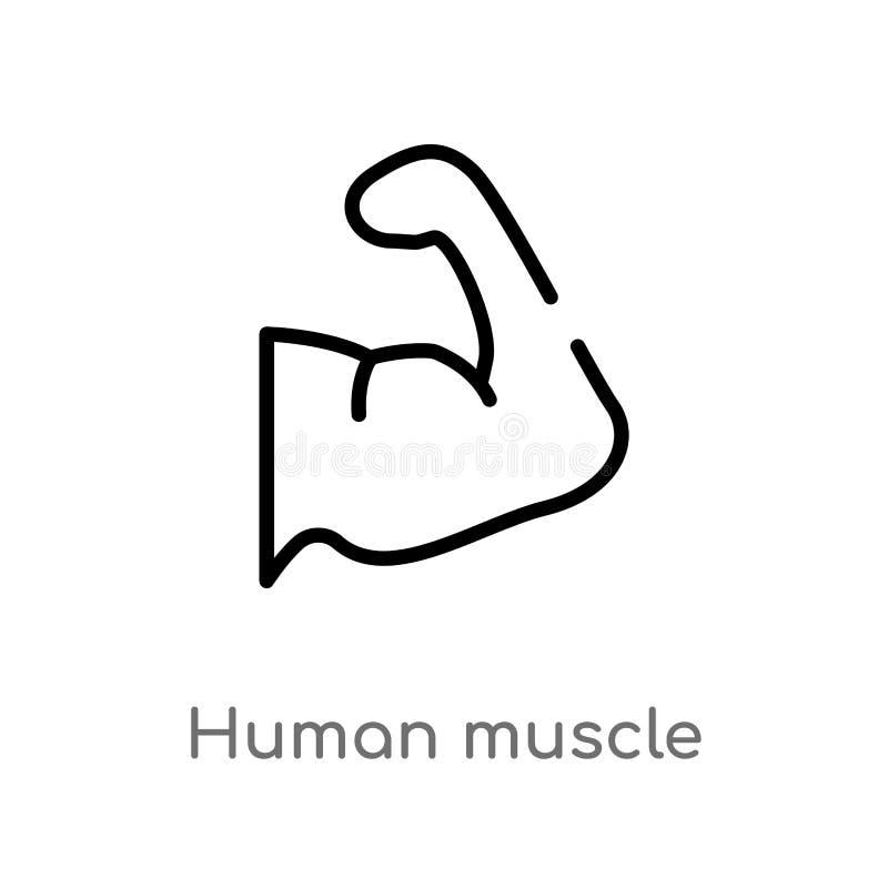 icona umana di vettore del muscolo del profilo linea semplice nera isolata illustrazione dell'elemento dal concetto umano delle p royalty illustrazione gratis
