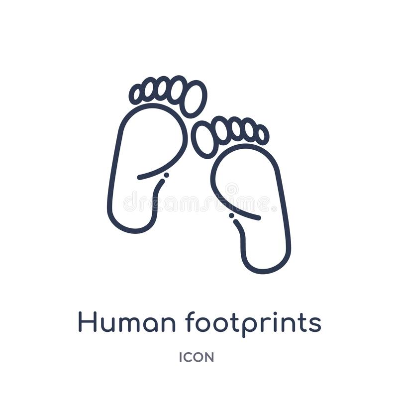 Icona umana lineare di orme dalla raccolta umana del profilo delle parti del corpo Linea sottile icona umana di orme isolata su b royalty illustrazione gratis