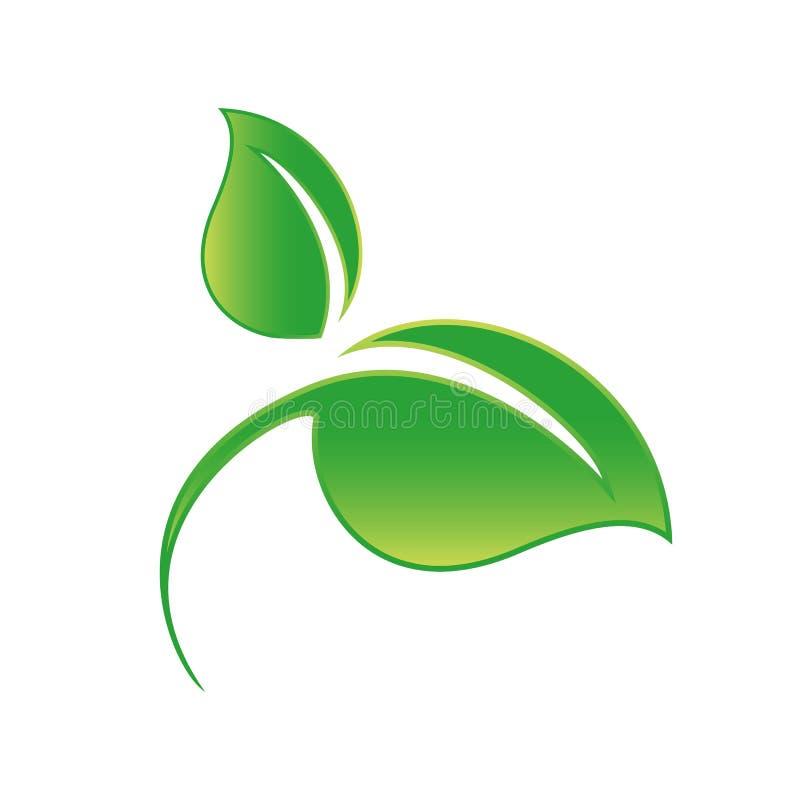 Icona verde della foglia isolata su bianco illustrazione vettoriale