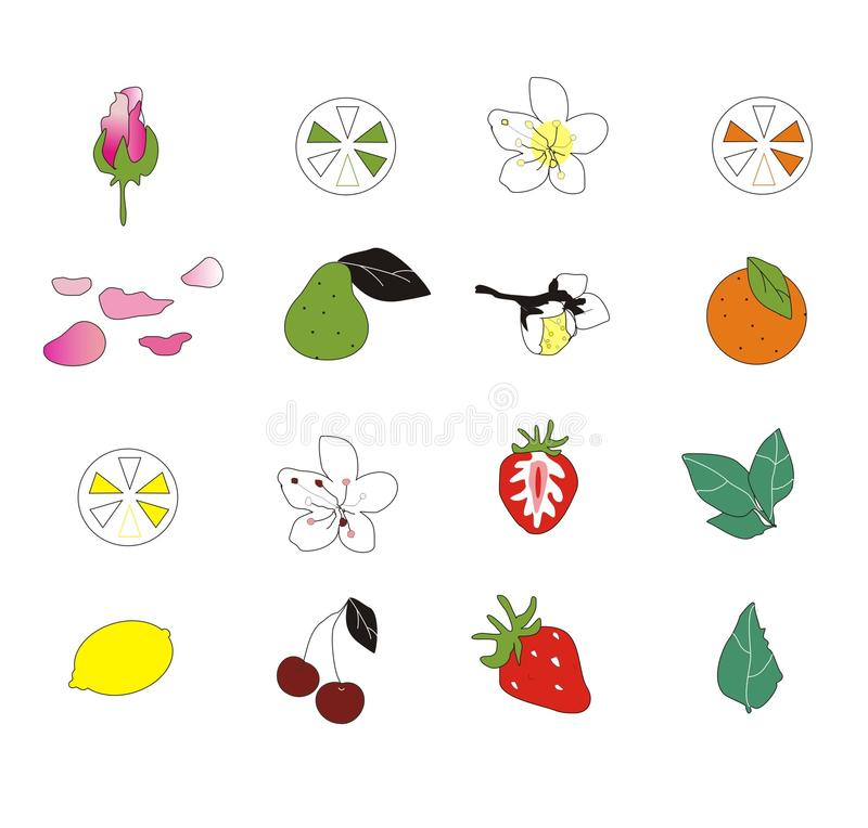 Icone del fiore e della frutta immagini stock