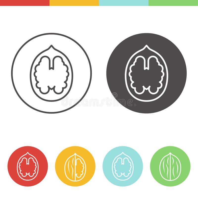 Icone della noce royalty illustrazione gratis