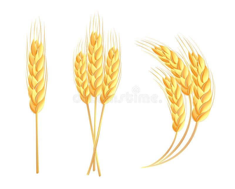 Icone delle orecchie del frumento royalty illustrazione gratis