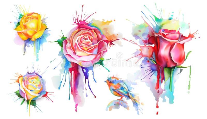 Icone delle rose dell'acquerello illustrazione vettoriale