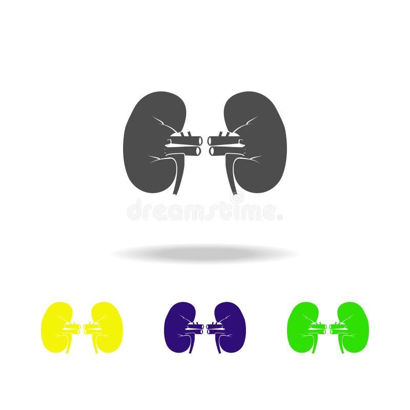 icone multicolori dell'organo dei reni Elemento delle icone multicolori delle parti del corpo Segni ed icona per i siti Web, web  royalty illustrazione gratis