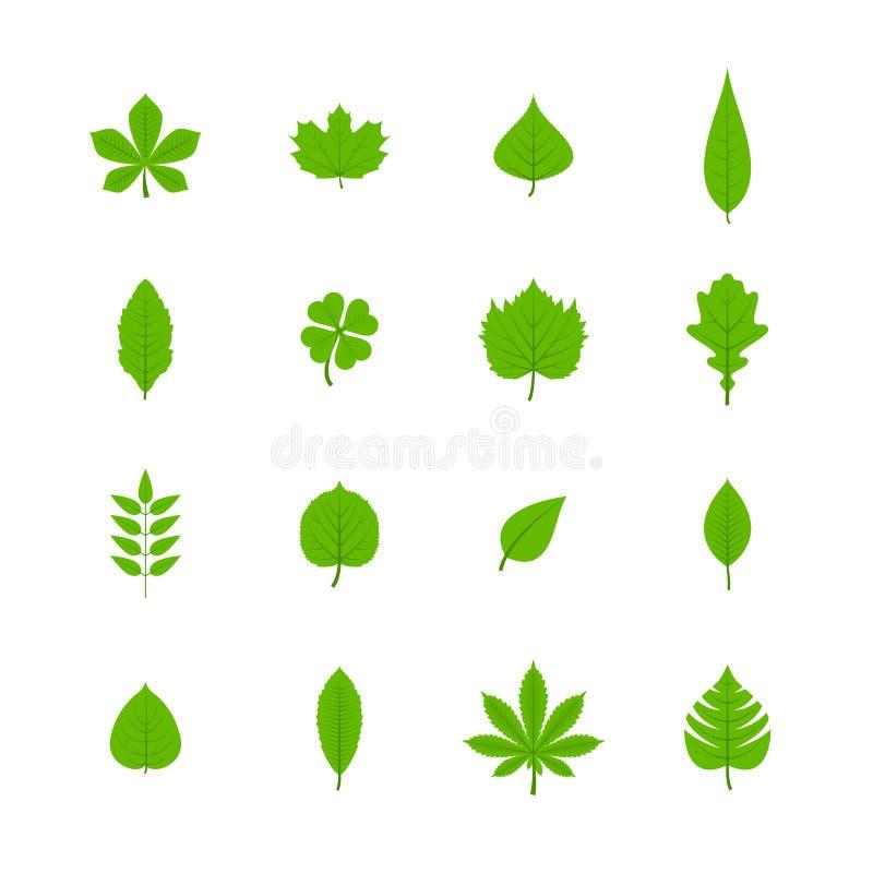 Icone piane delle foglie verdi messe illustrazione vettoriale