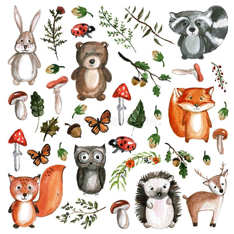 Icone sveglie dello zoo di asilo di immagini dell'acquerello degli animali del terreno boscoso illustrazione vettoriale