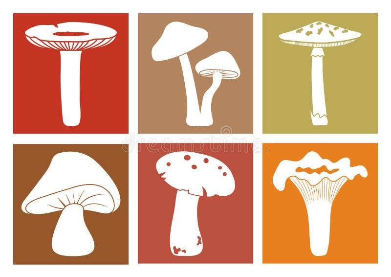 Icone variopinte dei funghi Funghi differenti del fumetto Vettore illustrazione vettoriale