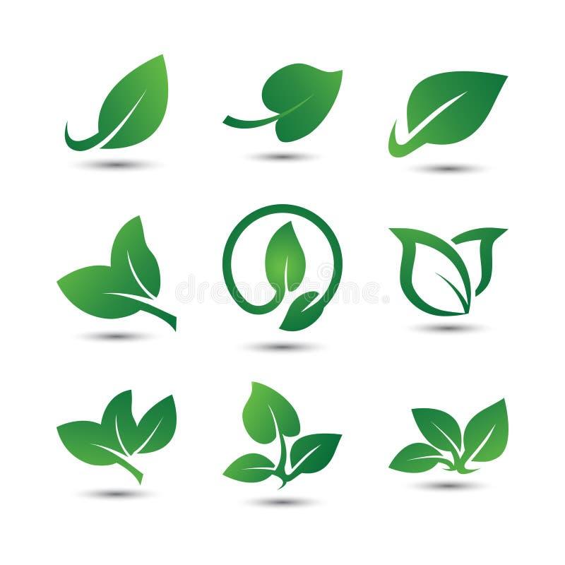 Icono abstracto del logotipo de la hoja fotografía de archivo