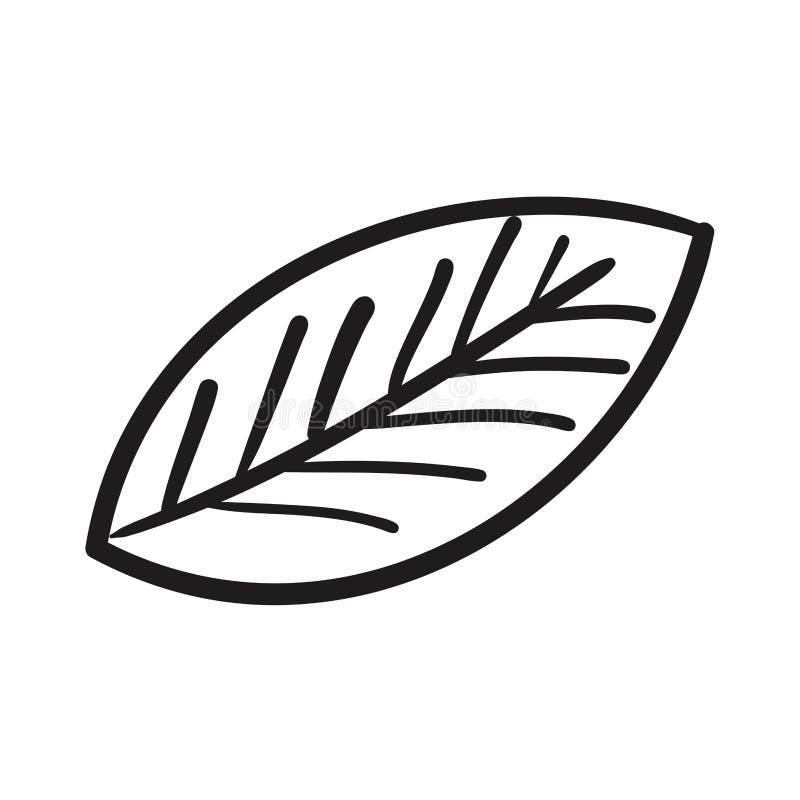 Icono aislado dibujo de la hoja ilustración del vector