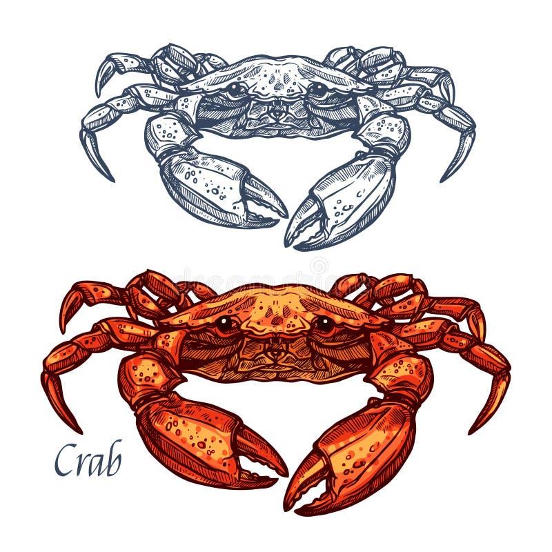 Icono aislado vector del bosquejo de los mariscos del cangrejo libre illustration