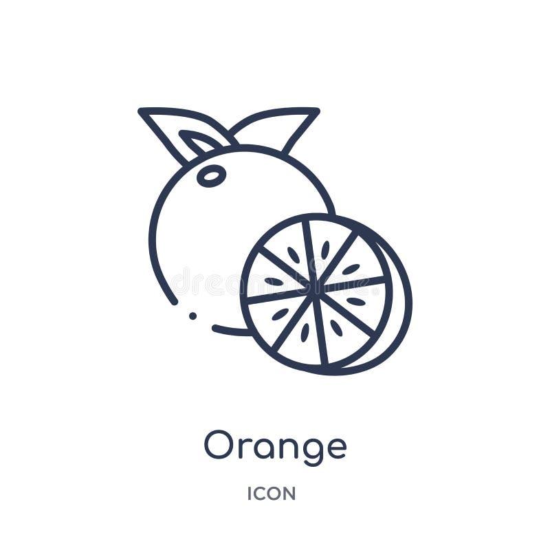 Icono anaranjado linear de la colección del esquema de las frutas Línea fina icono anaranjado aislado en el fondo blanco ejemplo  ilustración del vector