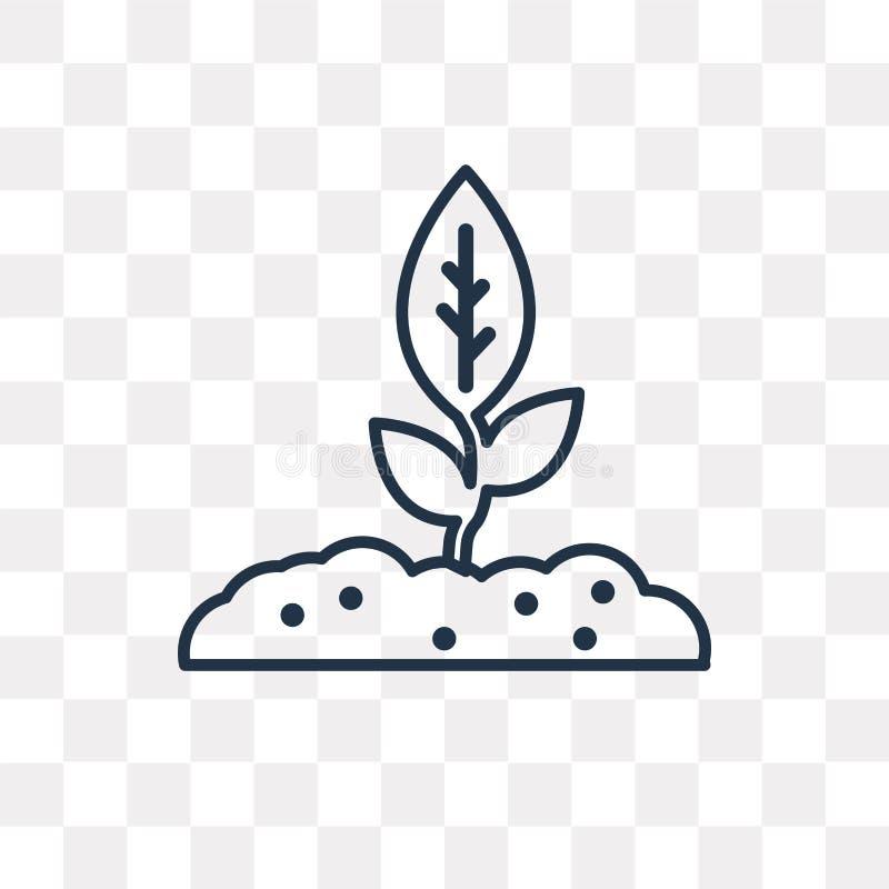 Icono cada vez mayor del vector de la planta aislado en el fondo transparente, li stock de ilustración