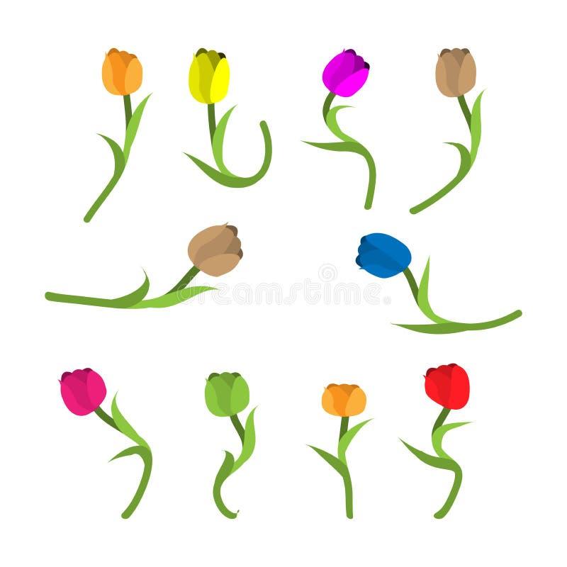 Icono colorido del vector del tulipán Diseño plano ilustración del vector