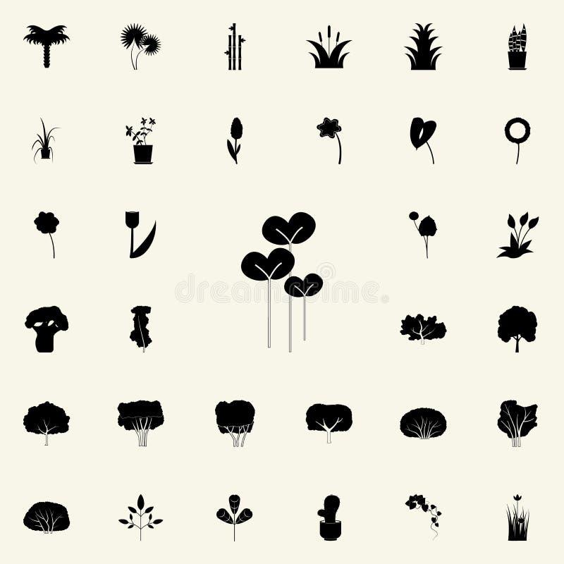 icono de la ensalada del berro Sistema universal de los iconos de las plantas para el web y el móvil ilustración del vector