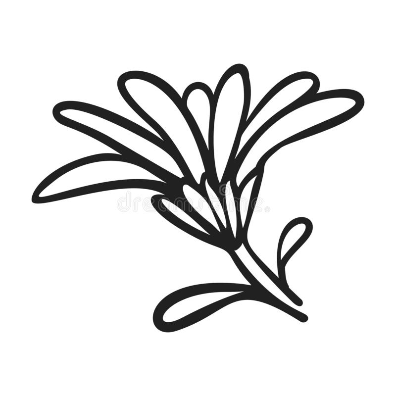 Icono de la flor del Calendula, estilo simple libre illustration