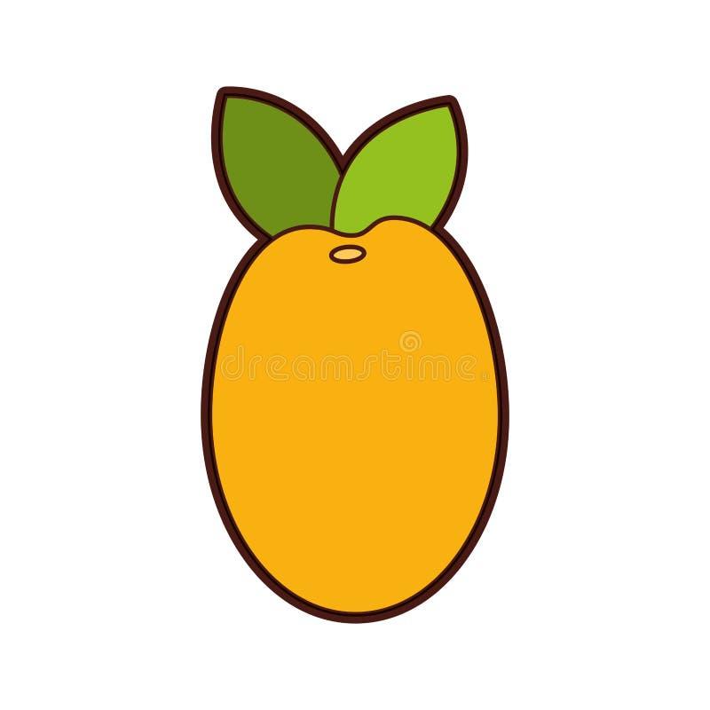Icono de la fruta fresca del mango libre illustration