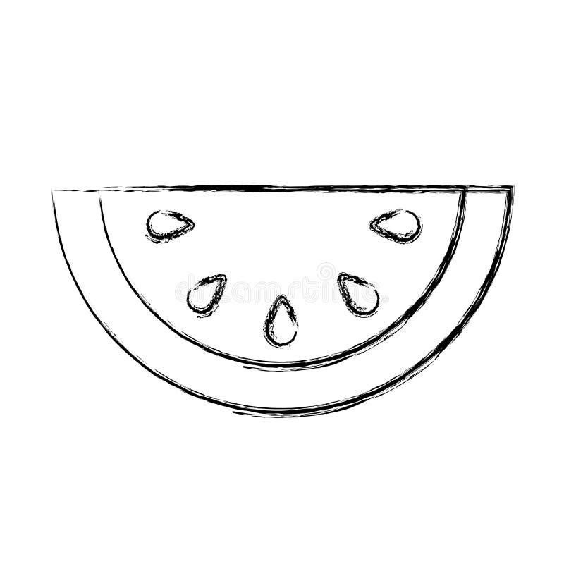 Icono de la fruta fresca del melón libre illustration