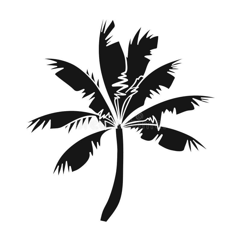Icono de la palmera en estilo negro aislado en el fondo blanco Ejemplo común del vector del símbolo que practica surf libre illustration
