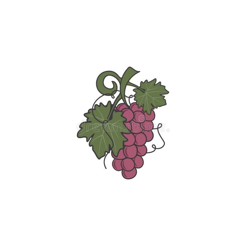 Icono de la uva roja Diseño plano lindo de los colores Símbolo de Friut para el logotipo, la etiqueta o la insignia Ejemplo común libre illustration