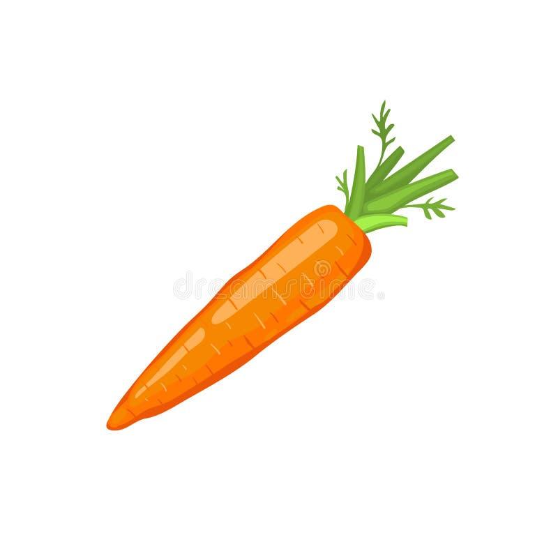Icono de la zanahoria aislado libre illustration