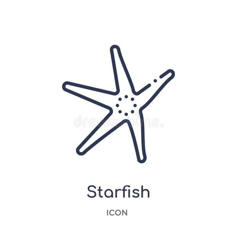 Icono de las estrellas de mar de la colección náutica del esquema Línea fina icono de las estrellas de mar aislado en el fondo ilustración del vector