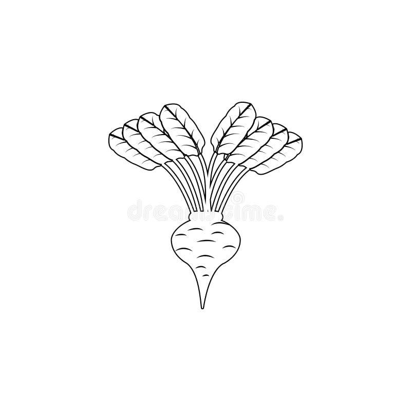 icono de las remolachas de la fruta en estilo del esquema Uno del icono de la colección de las raíces se puede utilizar para UI,  ilustración del vector
