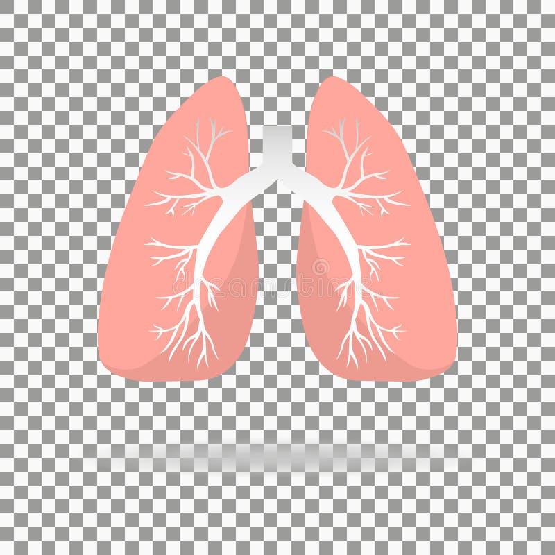 Icono de los pulmones, estilo plano Órganos internos del elemento humano del diseño, logotipo r Atención sanitaria Aislado en piz ilustración del vector