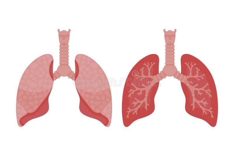Icono de los pulmones, estilo plano ?rganos internos del elemento humano del dise?o, logotipo r Atenci?n sanitaria ilustración del vector