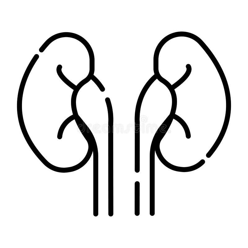 Icono de los riñones stock de ilustración