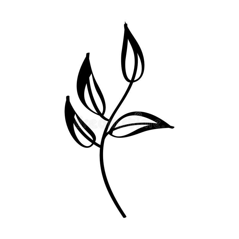 icono decorativo de la planta de la hoja libre illustration