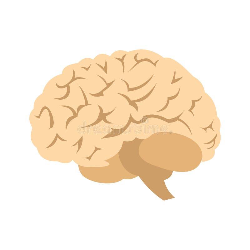Icono del cerebro humano ilustración del vector