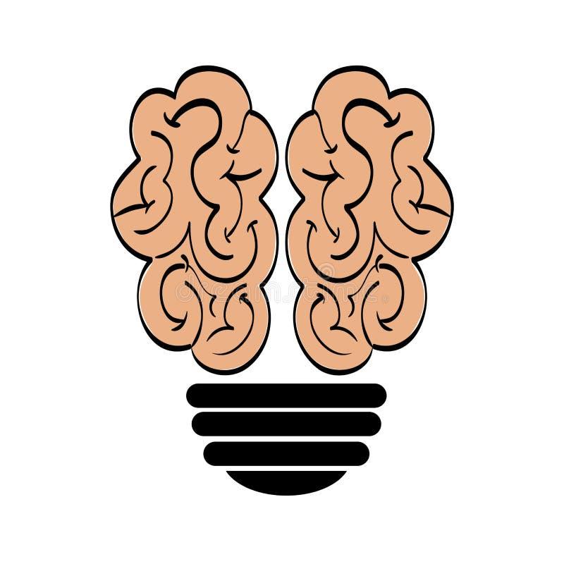 Icono Del Cerebro Y Del Bulbo Diseño Del órgano Humano Gráfico De ...