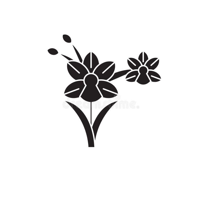 Icono del concepto del vector del negro de la orquídea Ejemplo plano de la orquídea, muestra stock de ilustración