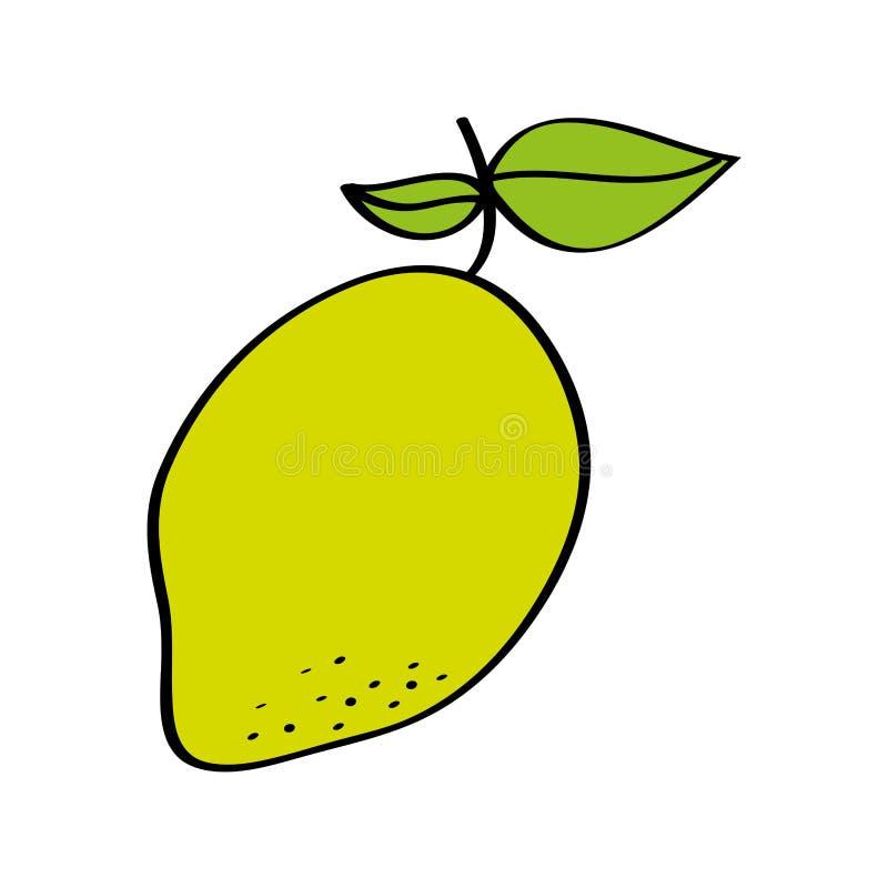 Icono del dibujo de la fruta fresca del mango ilustración del vector