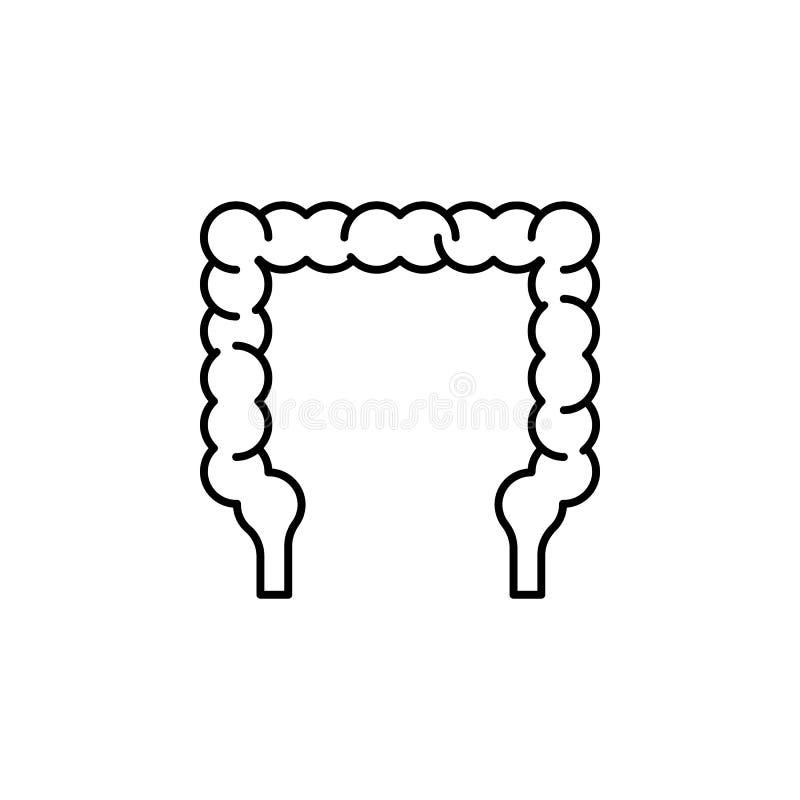 Icono del esquema del intestino del órgano humano Las muestras y los símbolos se pueden utilizar para la web, logotipo, app móvil ilustración del vector