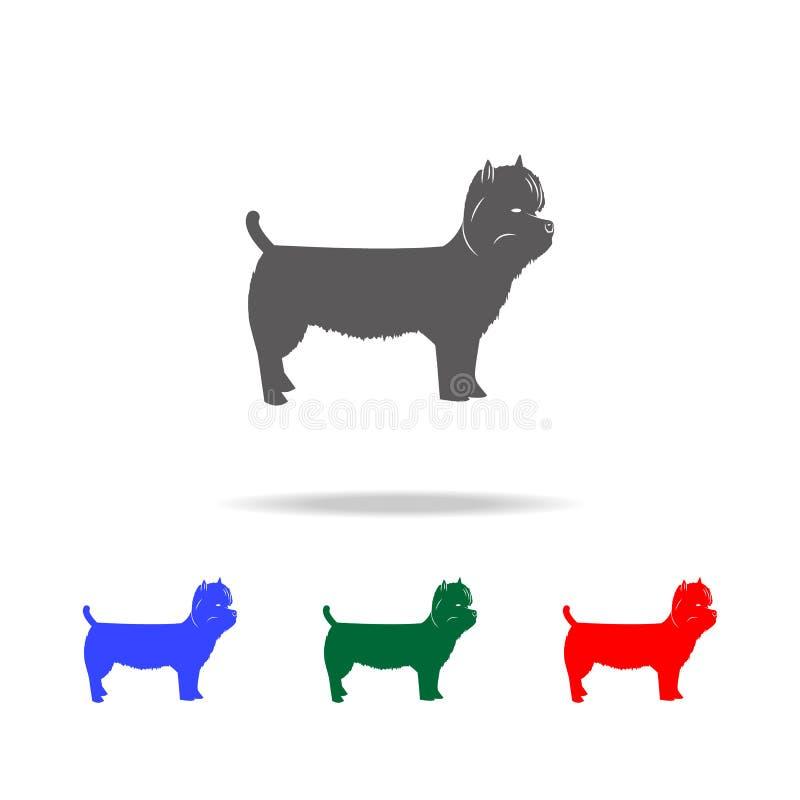 Icono del oeste de Terrier de la montaña Elementos de los iconos coloreados multi de los perros Icono superior del diseño gráfico ilustración del vector