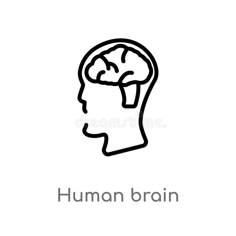 icono del vector del cerebro humano del esquema línea simple negra aislada ejemplo del elemento del concepto de la educación Movi libre illustration