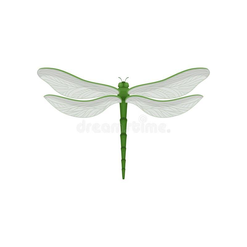 Icono del vector de Flar de la libélula hermosa con el cuerpo del verde largo y dos pares de alas transparentes grandes De vuelo  libre illustration