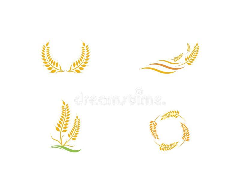 Icono del vector de Logo Template del trigo de la agricultura stock de ilustración