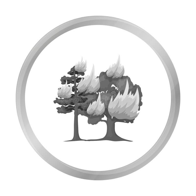 Icono del vector del incendio forestal en el estilo monocromático para el web ilustración del vector