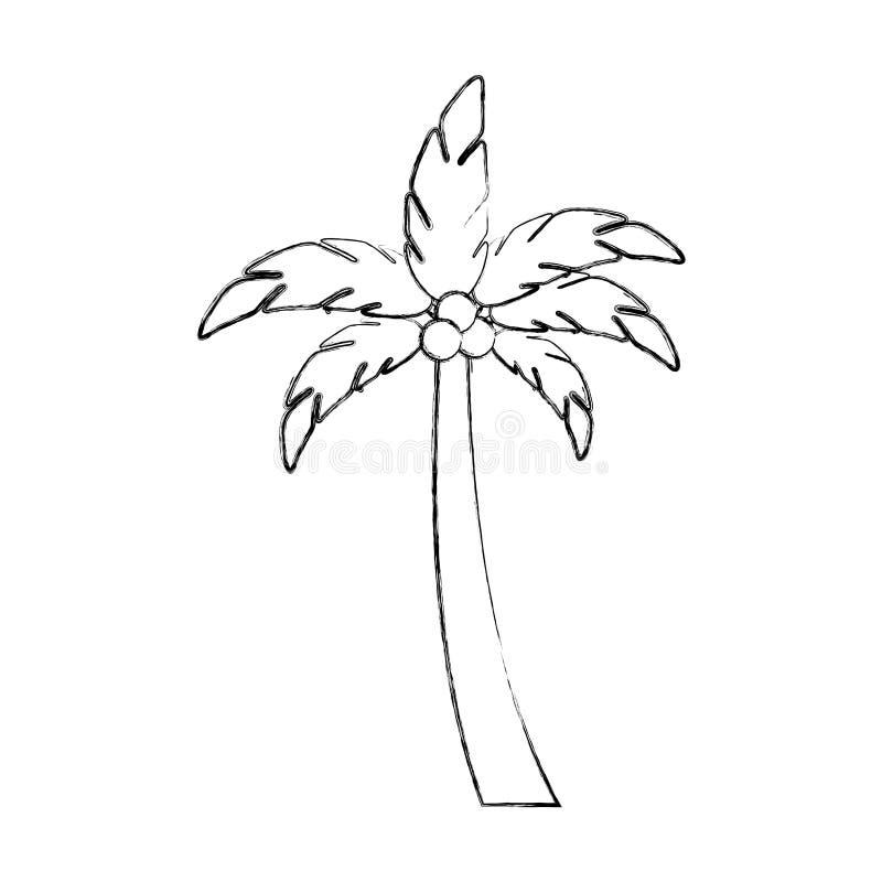 Icono del verano de la palma del árbol ilustración del vector