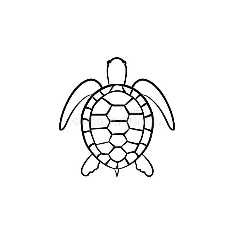 Icono dibujado mano del bosquejo de la tortuga stock de ilustración