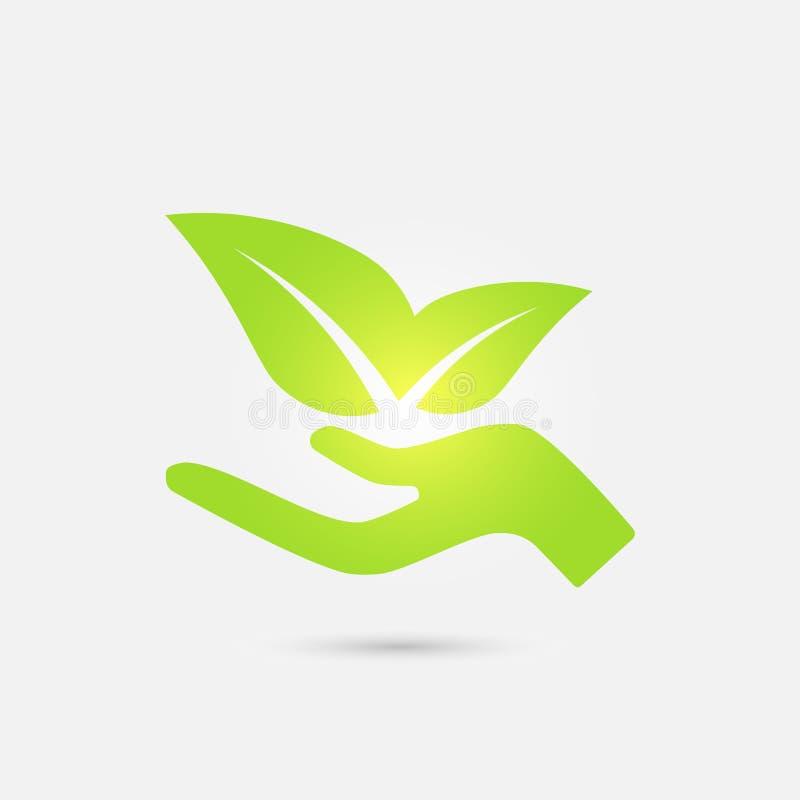 Icono ecológico Hojas crecientes del verde de la mano humana fotografía de archivo