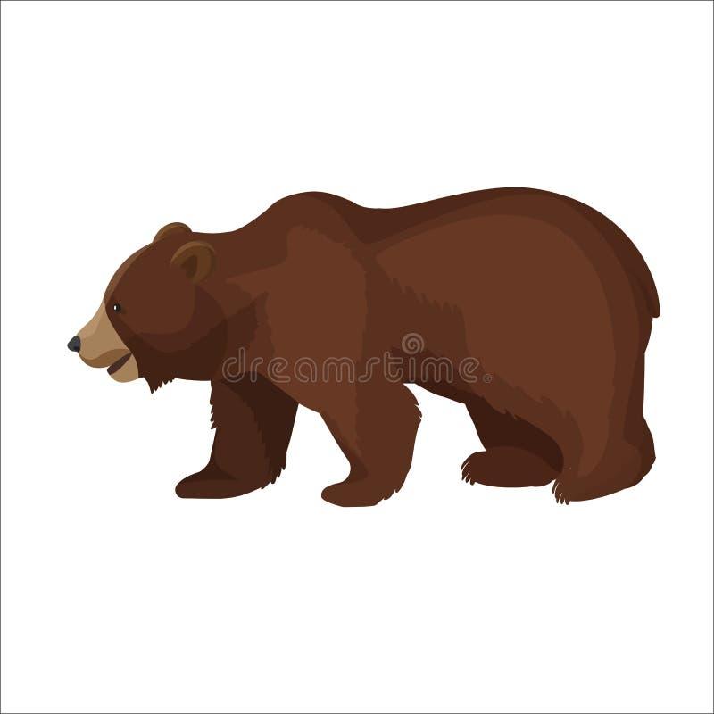 Icono gráfico del oso marrón del primer grande de la vista lateral en blanco ilustración del vector